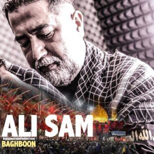 دانلود آهنگ جدید علی سام باغبون